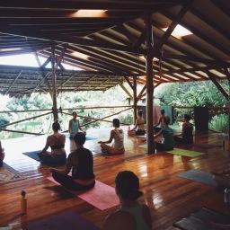 The Yoga Farm